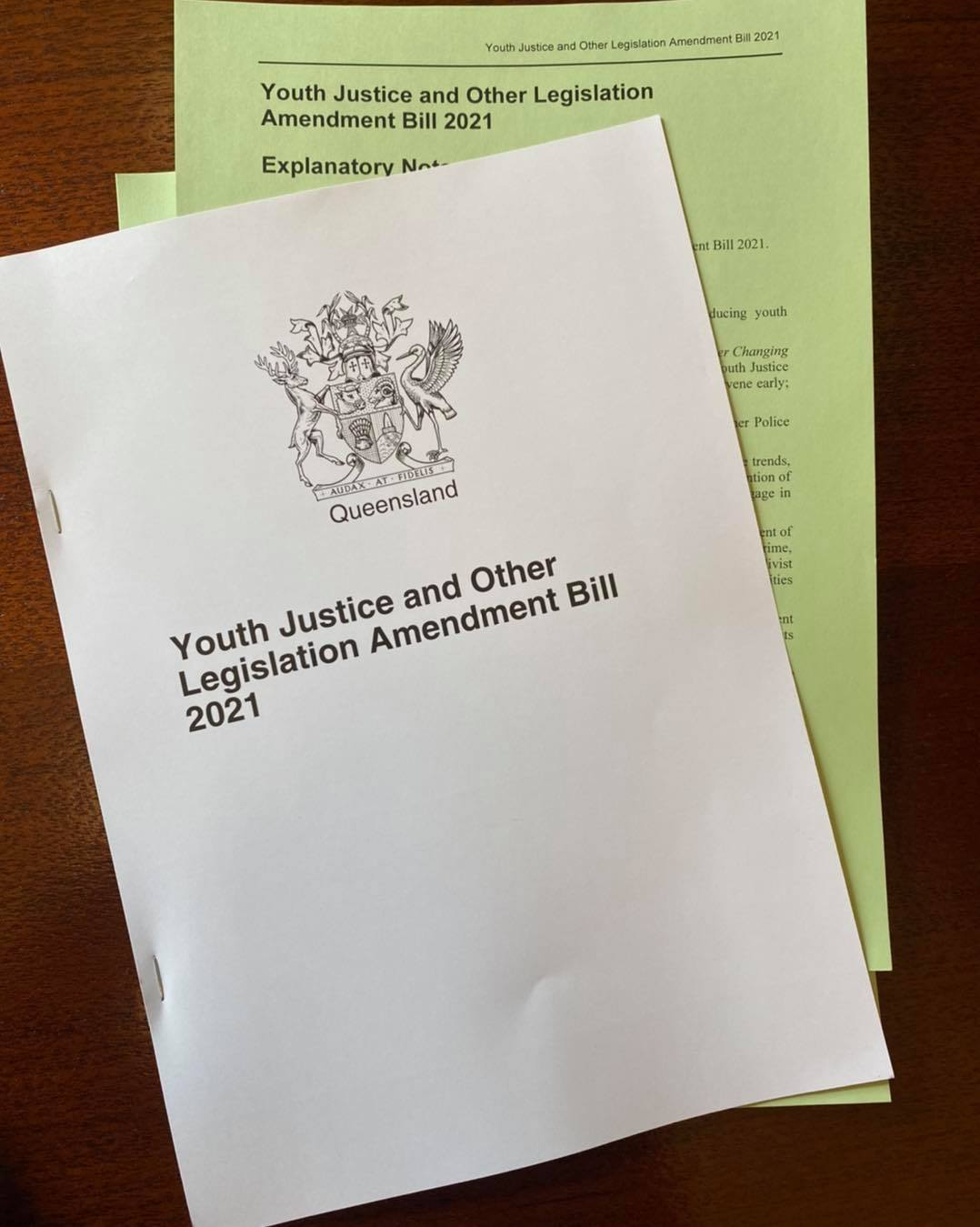 Youth Justice and Other Legislation Amendment Bill 2021.